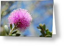 Purple Puff Greeting Card
