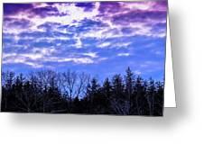 Purple Puffs Greeting Card