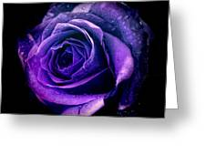 Purple Role Greeting Card