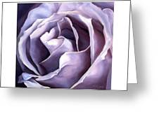 Purple Rose Greeting Card