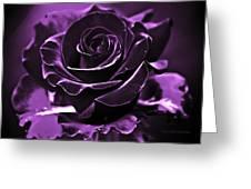Purple Seduction Greeting Card