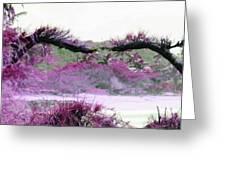 Purple Sensation Greeting Card