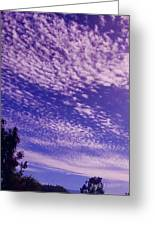 Purple Sky At Casapaz Greeting Card