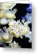 Purple Spotted Jellyfish  Greeting Card