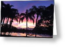 Purple Sunrise  Greeting Card