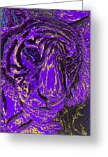 Purple Tiger Greeting Card