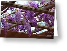 Purple Trellis Greeting Card