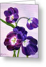 Purple Tulips On Gray Background Greeting Card
