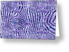 Purple Zebra Print Greeting Card