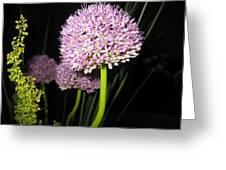 Purpleflower Greeting Card