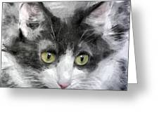A Cat With Green Eyes Greeting Card