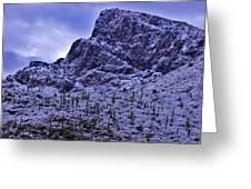 Pusch Ridge Snowfall Greeting Card