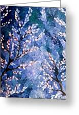 Pussy Willow Abstract Greeting Card