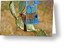 Pyrrhuloxia Swinging On The Feeder Greeting Card