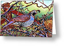 Quail Greeting Card by Nadi Spencer