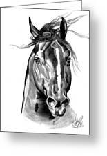 Quarter Horse Head Shot In Bic Pen Greeting Card