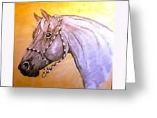 Quarter Horse W/ Rope Halter Greeting Card