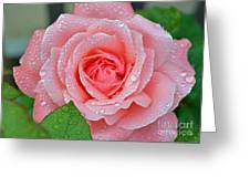 Queen Elizabeth Unfolded Greeting Card