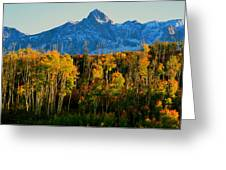 Queen Of The San Juans Greeting Card