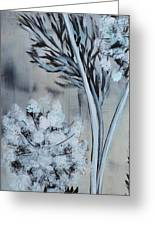 Queen's Lace 1 Greeting Card by Holly Donohoe