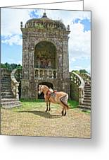 Quelven Village Square, Awaiting His Owner, Brittany, France Greeting Card