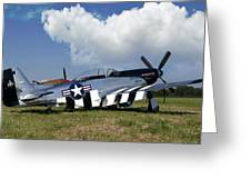Quick Silver P-51 Color Greeting Card