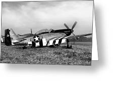 Quick Silver P-51 Mustang Greeting Card by Peter Chilelli