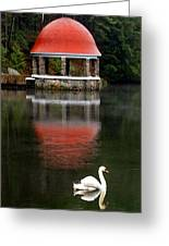 Quiet Afternoon Greeting Card