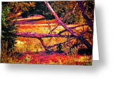 Quiet Meadow Greeting Card