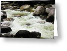 Quiet - Mossman Gorge, Far North Queensland, Australia Greeting Card