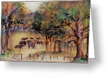 Quiet Pastures Greeting Card