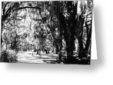 Quiet Walk Greeting Card