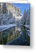 Quiet Winter Morning Greeting Card