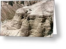 Qumran: Dead Seal Scrolls Greeting Card