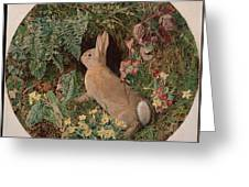 Rabbit Amid Ferns And Flowering Greeting Card