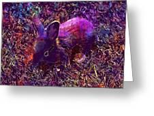 Rabbit Animal Baby Rabbit Bunny  Greeting Card