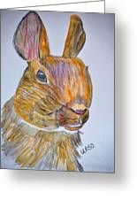 Rabbit Watercolor 15-01 Greeting Card