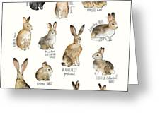Rabbits And Hares Greeting Card by Amy Hamilton