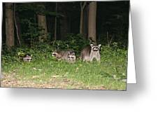 Raccoon Family Greeting Card
