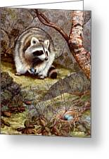 Raccoon Found Treasure  Greeting Card