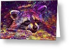 Raccoon Wild Animal Furry Mammal  Greeting Card