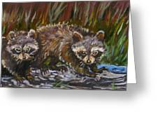 Raccoons From River Mural Greeting Card