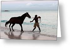 Race Horse And Groom 1 Greeting Card