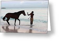 Race Horse And Groom 2 Greeting Card