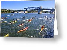 Race On The River Greeting Card