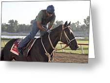 Racehorse At Evangeline Downs Greeting Card