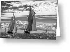 Racing On Open Waters B-w Greeting Card