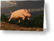 Racing Pig Greeting Card