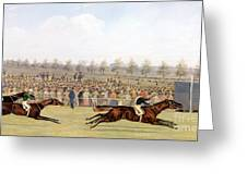 Racing Scene Greeting Card