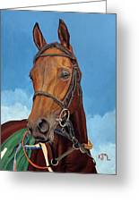 Radamez - Arabian Race Horse Greeting Card